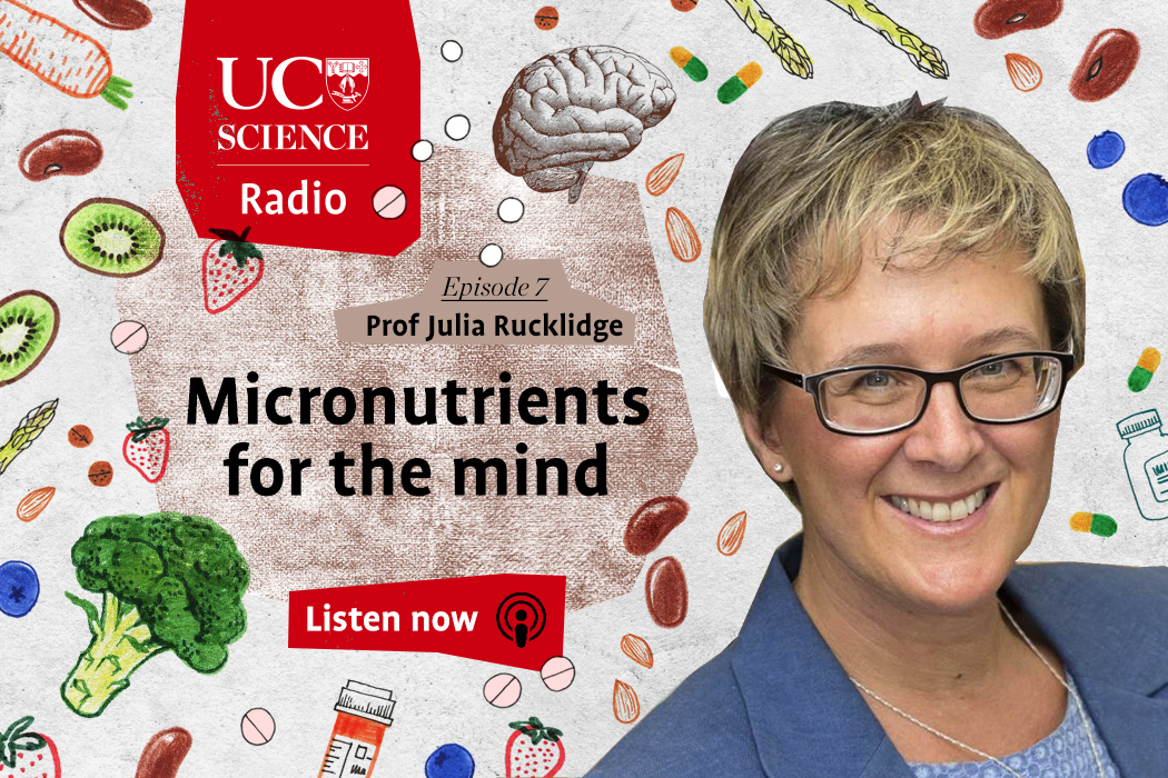 Micronutrients for the mind
